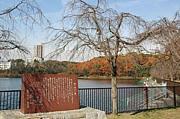 平和公園(名古屋市)