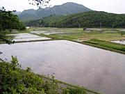 農業プチ体験@関西