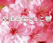 やまとなでしこ塾from大阪