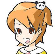 カードヒーロー(DSiウェア)