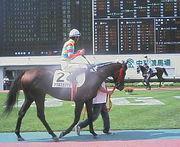 競馬 思い出の馬について語ろう