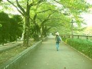 茨城県立並木高等学校(第12期)