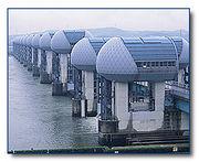 No More Dams !! ダム反対!!
