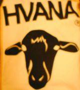 HVANA (ハバナ)