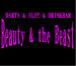 Beauty&the Beast