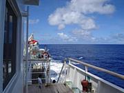 望星丸  第41回海外研修航海