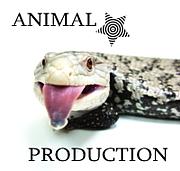 動物プロダクション★ペット業界