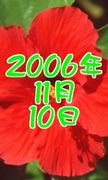 2006年11月10日生まれ◎