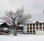 甲賀市立大原小学校