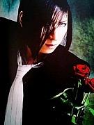 †+浅葱中毒×薔薇中毒+†