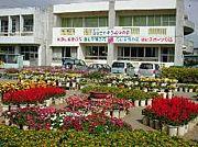 沖縄県西原町立西原小学校