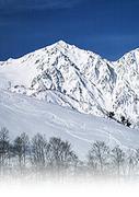 突発スキー掲示板