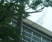 高岡高等学校2003年度卒業上等!