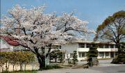 美祢市立伊佐中学校
