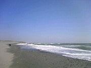 海が好き:東海版