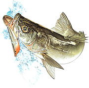 成田 釣り集会所