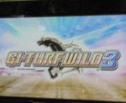 G1 Turf Wild3