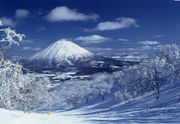 自然館 (snowboard)