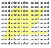 何の動物になりたい?