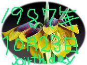 1987年10月23日生まれ