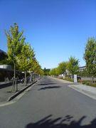 愛知県立大学新入生歓迎委員会06