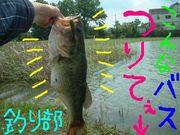釣り部 大阪桐蔭支部