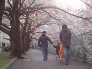 昭和27年生まれ