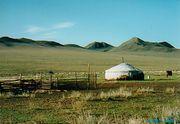 野の営み(2008春)