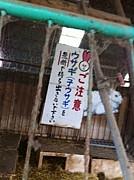 ★(株)チャーモ商会★