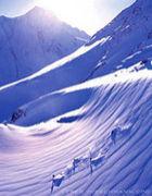 スキーでマイミク(v≧∀≦)