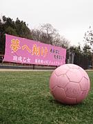 藤枝順心サッカー部