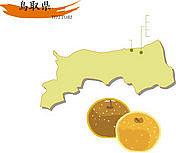 鳥取県にアメフトを流行らせる