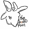 the audio pool