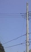 電柱、電線に美を感じる