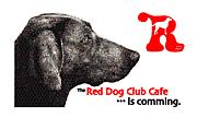 RED DOG CLUB CAFE