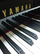 ヤマハ音楽院 東京校