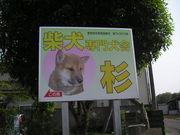 柴犬専門杉犬舎友の会