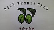 ソフトテニスクラブうめっちゅ