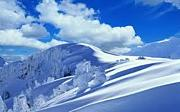 山形県 スノーボードLOVE会