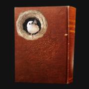 小鳥たちのための読書会