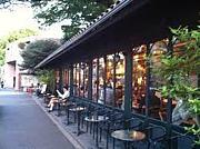 ☆*:.。. Cafe In Tokyo.。.:*☆