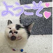 nagoya no プチオフ in 名古屋