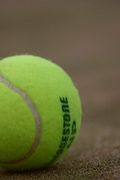 テニス留学