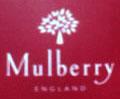 マルベリーが好き