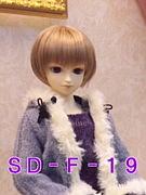 SD-F-19