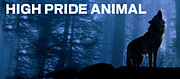 HIGH PRIDE ANIMAL