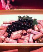 高級ワイン品評会