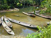 丸木舟探検隊