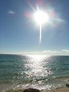 沖縄の海が1番綺麗になる日