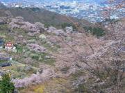 福島感動街づくり研究会